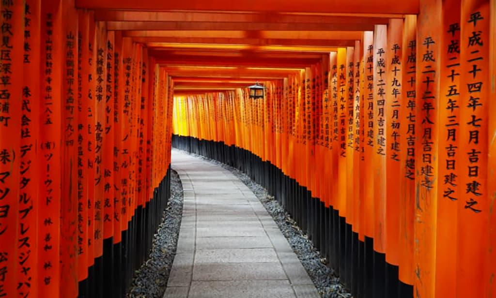 Torii Gates Japan